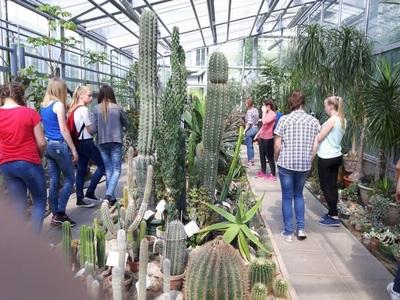 Netradicinės pamokos Kauno žmogaus anatomijos muziejuje, zoologijos sode ir botanikos sode bei oranžerijoje