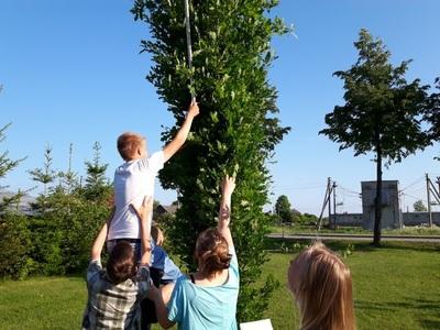 """Tyrimas """"Vidutinis mokyklos parko medžių aukštis"""""""