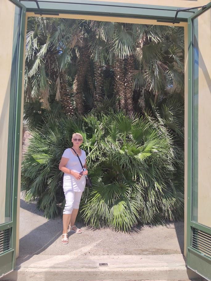 Seniausias pasaulyje botanikos sodas, išlikęs originalioje vietoje
